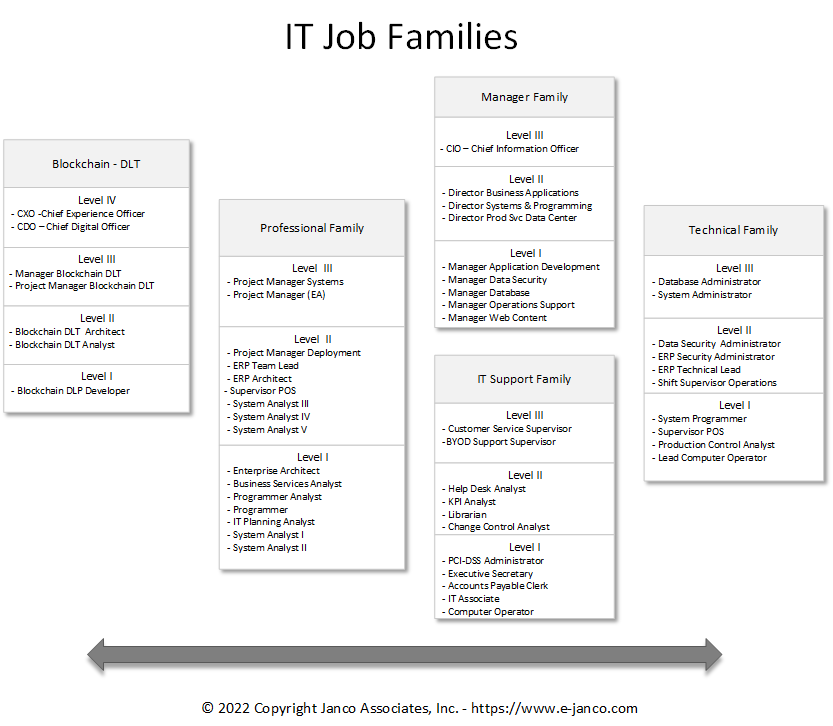 IT Job Family Classification System