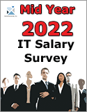 2013 IT Salary Survey